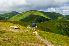 Group of tourists hiking in Carpathian mountains, nature landscape, Chornogora ridge, Ukraine. Royalty Free Stock Images