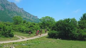 A group of tourists on horseback walks through the mountains. A group of tourists children and adults on horseback walks through the mountains, covered with stock video