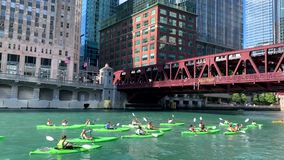 Group of tourists in kayaks paddle across the Chicago River near the Merchandise Mart. On a beautiful summer afternoon stock footage