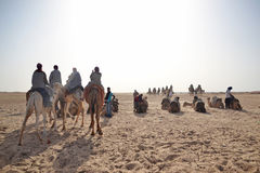 Group of tourists riding camels, Sahara Stock Image