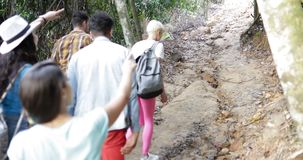 Group Of Tourists Trekking In Forest Back Rear View, People On Hike Together Trail, Young Travelers Team. Slow Motion 60 stock video footage