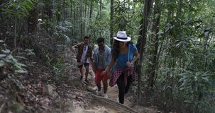 Group Of Tourists Walking Through Woods On Hike, Diverse People Trekking Forest Path Together. Slow Motion 60 stock video