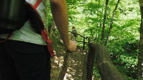 A group of tourists with wooden sticks in their hands walk in the woods along a hiking trail. A group of tourists with wooden sticks in their hands are walking stock footage