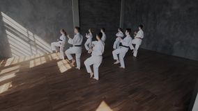 Group training fighting stance in martial arts. Warlike, brave Male and female teens practice fight technique. They show stock video footage