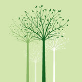 Group of Trees and Green Leafs. Vector Illustration. Graphic Element Royalty Free Stock Photos