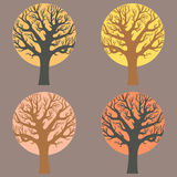 A group of trees. Vector set with a group of trees Stock Images