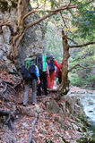 Group of trekkers hike  through the autumn woods Stock Image