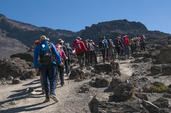Group trekking on Machame route Kilimanjaro Stock Images