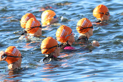 Group of triathletes wearing orange bathing caps in the water stock image