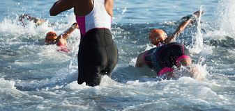 Group triathlon participants running into the water for swim portion of race. Splash of water and athletes running stock photo