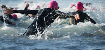 Group triathlon participants running into the water for swim portion of race. Splash of water and athletes running stock photography