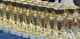 Group of the trophies Stock Images