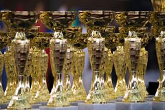 Group of the trophies Royalty Free Stock Photography