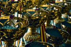 Group of trophies Stock Images