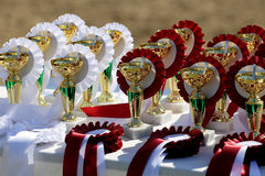 Group of the trophies and ribbons for the winners. Golden trophy cups and ribbons for riders Stock Image