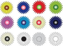 Group of twelve flowers of different colors Stock Photography