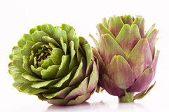 A Group of Two Artichokes Stock Photography