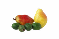 Group of two pears and Feijoa. Group of two pears and a few Feijoa Stock Photos