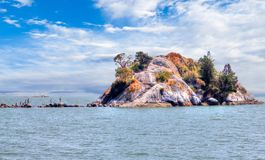 Whytecliff Islet Park Near Horseshoe Bay in West Vancouver Royalty Free Stock Photo