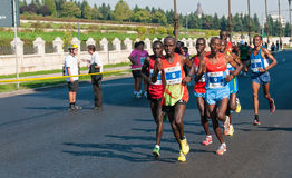 Group of unidentified marathon runners compete Royalty Free Stock Images