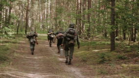 Group Of Unidentified Re-enactors Dressed As German Wehrmacht Soldier Walk In Forest. stock video