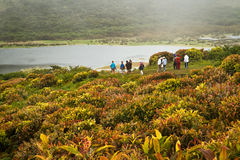 Group of unidentified tourists hiking along El Royalty Free Stock Photos