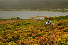 Group of unidentified tourists hiking along San Royalty Free Stock Image