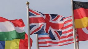 Group of united flags stock footage