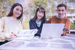 Group Of University Students asian sitting on the green grass  Working and reading Outside Together in a park royalty free stock photo