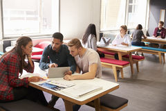 Group Of University Students Working In Study Room Royalty Free Stock Images
