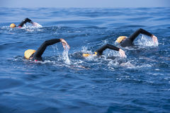 Group of unknown Swimmers at sea. Stock Photo
