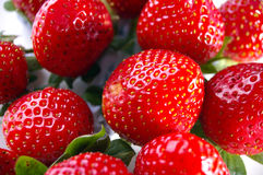 Group of upside down strawberries. Group of strawberries from a different angle Stock Photos