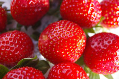 Group of upside down strawberries isolated. Group of strawberries from a different angle Royalty Free Stock Photography