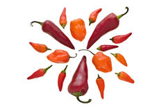 Group of various hot chili peppers Royalty Free Stock Photography