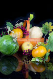 Group of various kind of ripe pumpkinies Stock Photo