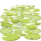 Group vector water lilies floating on surface. Green lowpoly waterlily. Stock Photos