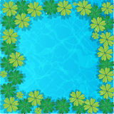 Group vector water lilies floating on water surface. Water background Royalty Free Stock Photos
