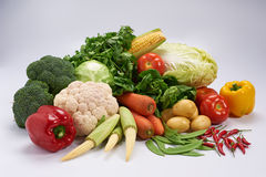 Group of vegetable. Group of fresh and colourful vegetable with plain background Stock Images