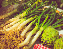 Group vegetables uncooked royalty free stock photo