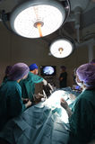 Group of veterinarian doctor in operation room for laparoscopic surgical Royalty Free Stock Photography
