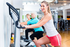 Group on vibrating plates in gym training Stock Photography