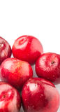 Group Of Victoria Plum Or Red Plum IV Royalty Free Stock Photography