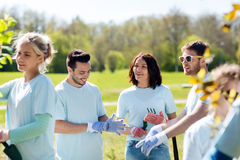 Group of volunteers planting tree in park Stock Photos