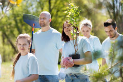 Group of volunteers with trees and rake in park Royalty Free Stock Photos