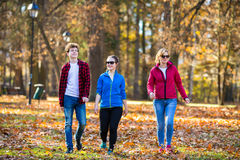 Group walking royalty free stock photos
