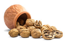 Group of Walnut Stock Image