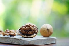 Group of walnut in wooden bowl on wood background, copy space, super food concept. Group of walnuts and a crack nut in wooden bowl on wood background, copy space royalty free stock photography