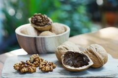 Group of walnut in wooden bowl on wood background, copy space, super food concept stock image