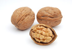 Group of walnuts Royalty Free Stock Photography