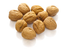 Group walnuts Stock Photography